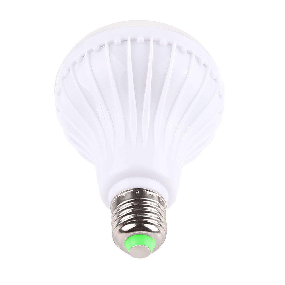 2 x 42 MM intérieur lumineux guirlande ampoule LED XENON Blanc UK