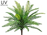 19'' UV Protected Boston Fern Bush Green (Pack of 12)