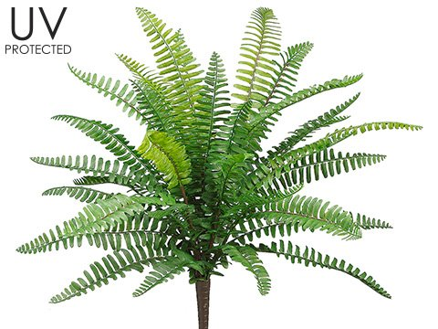 19'' UV Protected Boston Fern Bush Green (Pack of 12) by Silk Decor