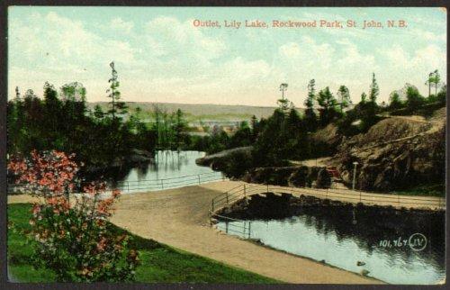 Outlet Lily Lake Rockwood Park St John NB undivided back postcard - St John Outlets