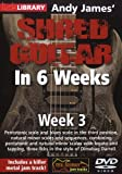 Best Leonard Guitars - Hal Leonard 393160 Andy James' Shred Guitar in Review