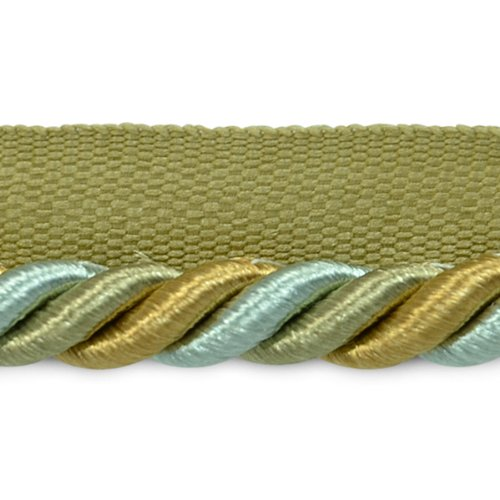 Expo International 20-Yard of Preshea Twisted Lip Cord Trim, 3/8-Inch, Sage Multi
