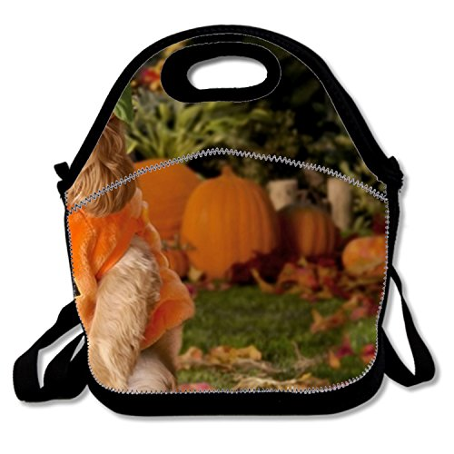 Lunch Box for Women Polyester Lunch Boxes for Kids with Dog Dressed As A Pumpkin ()