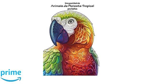 amazon com livro para colorir de animais da floresta tropical para