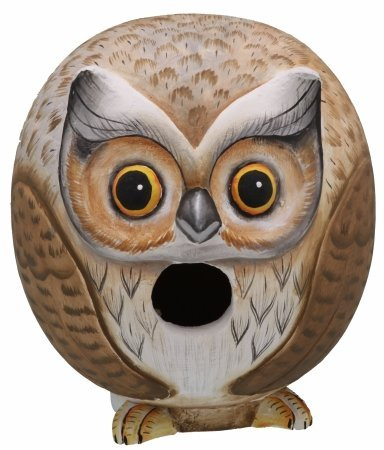 Songbird Essentials Owl Gord-O Birdhouse