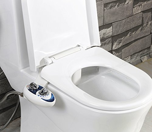 Buy the best bidet