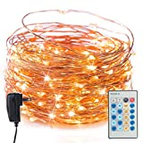 Twinkle Fairy String Lights with Remote & Timer, 65 Ft. 200 LED Copper Wire Firefly Lights for Bedroom Wedding Gathering Party Christmas DIY Decoration, Warm White
