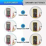 【5-Year Warranty】 SURPOWER CR2450 3V Lithium
