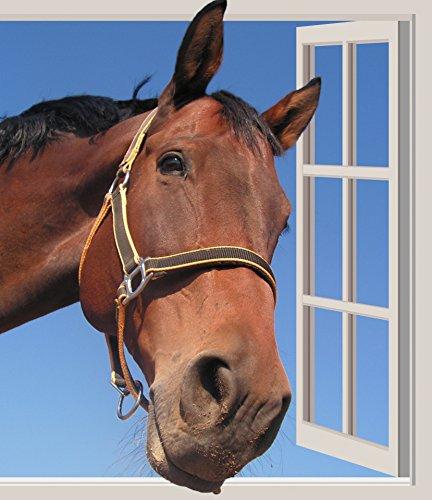 Horse Head Through Window Animals Poster Print 24x 36
