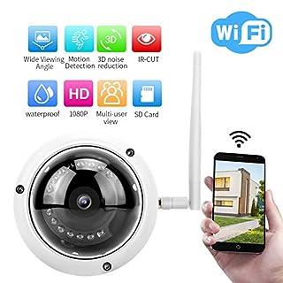 Simlug Dome Outdoor Security Camera, 1080P 2MP HD Wireless WiFi Camera IR Night Vision Doom Security Camera(110-240V)