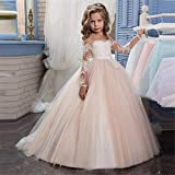 Costume Cosplay Princess Lace Applique Embroidered Kids Princess Wedding Bridesmaid Floor Length Layered Puffy Tulle Dresses Flower Girls First Communion Dress Fancy Party