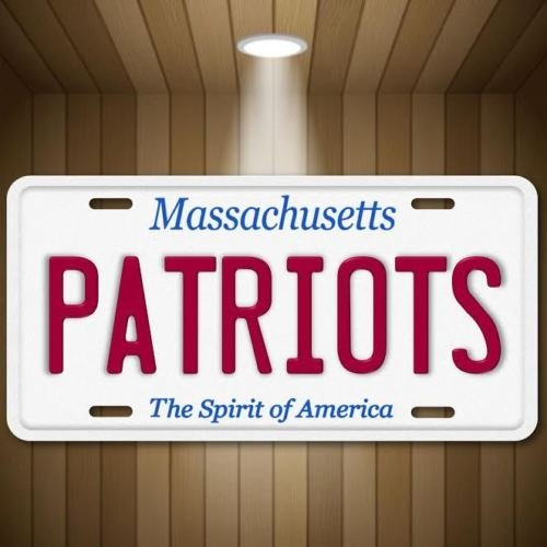Forever Signs Of Scottsdale Patriots AFC NFL New England Massachusetts Football Vanity License Plate Tag