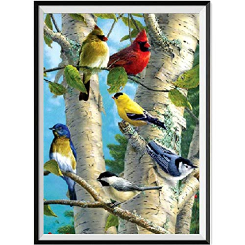 aliveGOT 5D Diamond Painting by Number Kit, Full Drill Rhinestone Embroidery Cross Stitch Supply Arts Craft Canvas Wall Decor, Colorful Birds