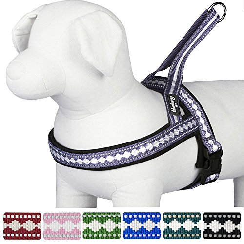 [Blueberry Pet 7 Colors Soft & Comfy Jacquard Padded Dog Harness, Chest Girth 21.5
