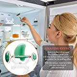 Jade Roller and Gua Sha Face Luxury Anti Aging Tool Set with Countertop Stand – Grade A – Authentic Brazilian Stone Facial Massager for Wrinkles - Non-Squeak by Beauty & Wishes