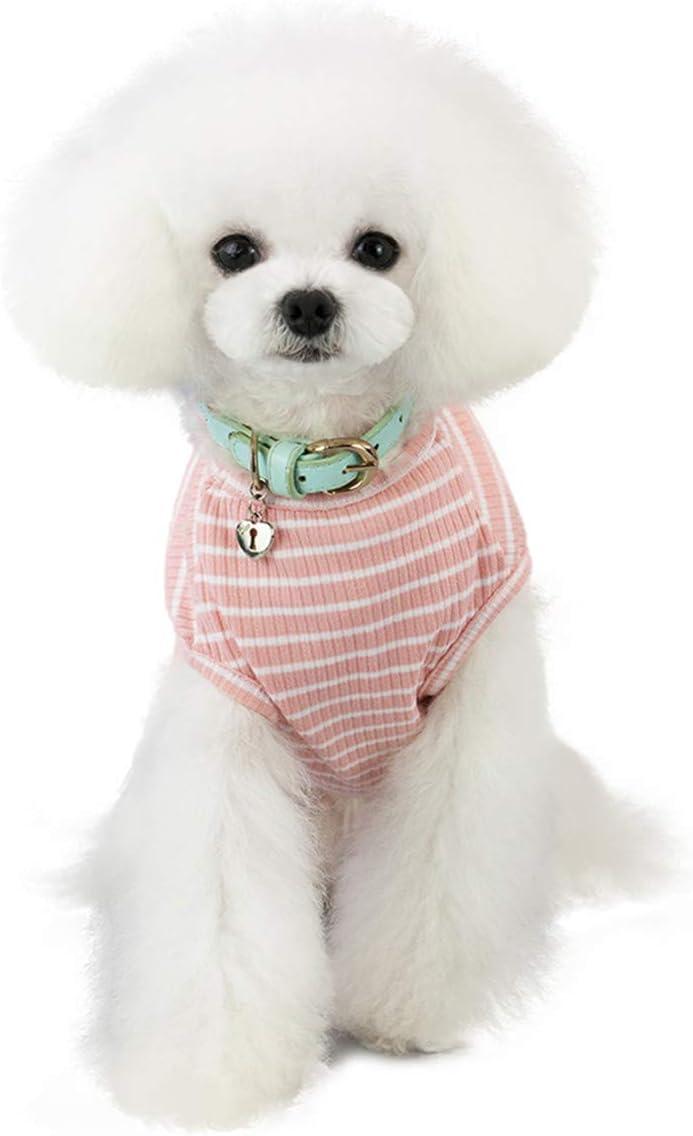 Jersey para Perro o Gato Pequeño/Ropa Cómoda de Punto para Mascotas Suéter de Abrigo para Mascotas Rosa Rojo Azul Gris Hierba - Peso 1,2-9,0 kg