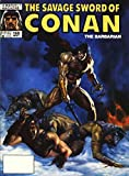 Item: Savage Sword of Conan #160 | Publisher: Marvel | Cover Artist: Dorian Vallejo | Writer: James Owsley | Artist: Andy Kubert | Appearances: Conan the Barbarian | Storylines: Brothers | Notes: B&W | Combined Shipping Policy: Each addit...