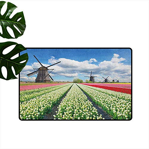 RenteriaDecor Windmill,American Floor mats Vibrant Blossoming Meadow Farmland Scenic Cloudy Sky The Netherlands Heritage 18