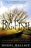 Big Fish by Wallace, Daniel [Paperback]