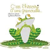 vignette de 'C'est l'histoire d'une grenouille... (Agnès de Lestrade)'