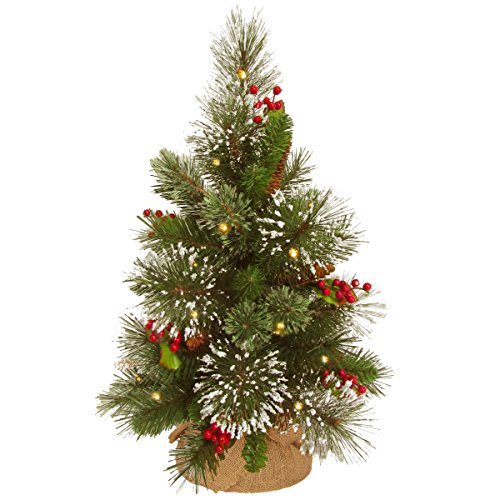 National Tree 18 Inch Wintry Pine Tree with Cones, Red Berries, Snowflakes and 15 Warm White Battery Operated LED Lights with Timer in Burlap (WP1-345-18-B1)