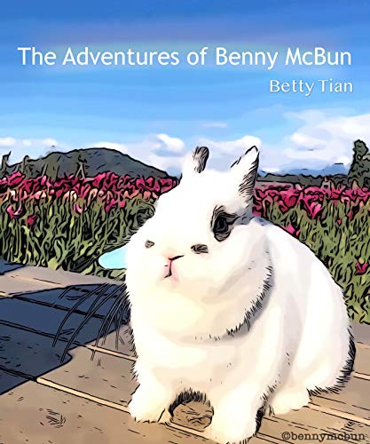 The Adventures of Benny McBun