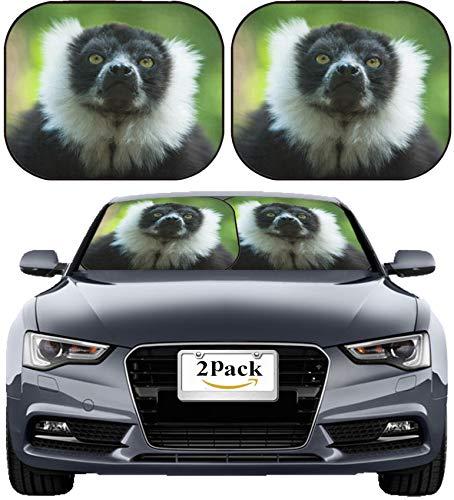(MSD Car Sun Shade Windshield Sunshade Universal Fit 2 Pack, Block Sun Glare, UV and Heat, Protect Car Interior, Image ID: 8367882 Close up of a Black and White Ruffed Lemur)