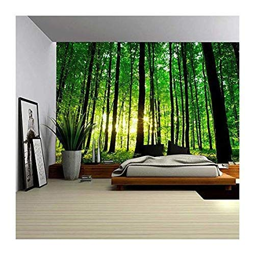 wall26 - Sun Shining Through a Tall Tree Forest - Wall Mural, Removable Sticker, Home Decor - 100x144 inches by wall26 (Image #3)