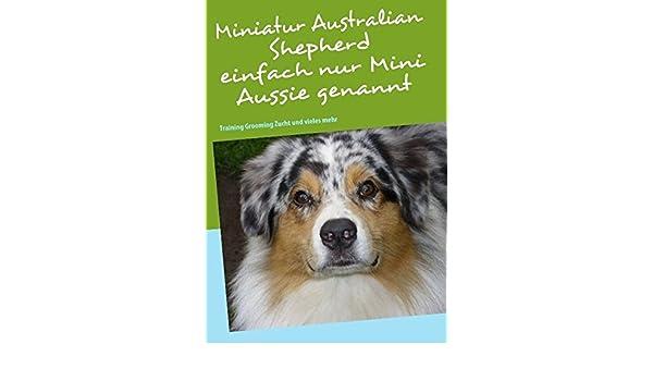 Miniatur Australian Shepherd: Training Grooming Zucht und vieles mehr (German Edition)