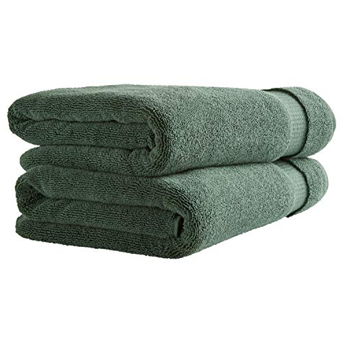 Rivet HygroCotton Cotton Bath Towels, Set of 2, Pine