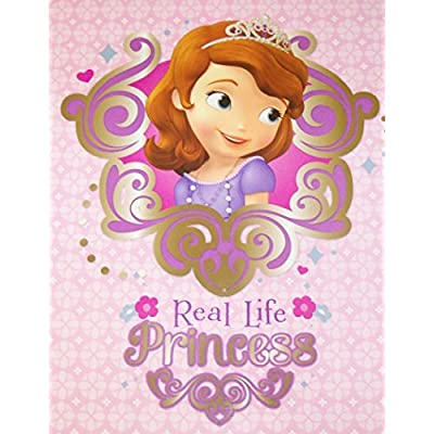 Innovative Design 101 Disney Sofia The First Folder 2 Pack ~ Real Life Princess, Princess from Within: Toys & Games
