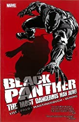 Black Panther - The Most Dangerous Man Alive: The Kingpin of Wakanda (Black Panther (Unnumbered)) by Liss, David (2012) Paperback