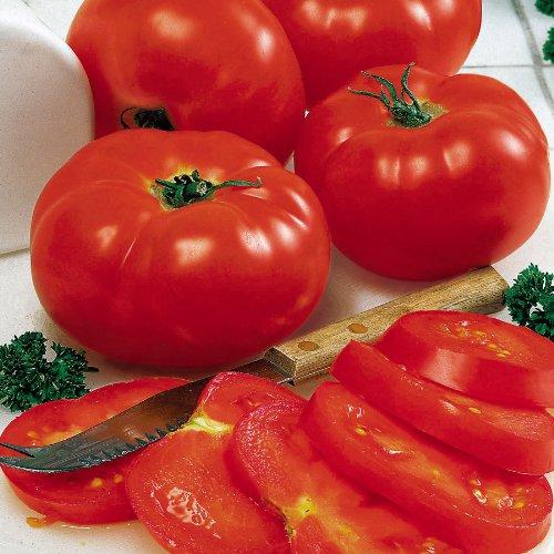 Beefsteak Tomato Heirloom