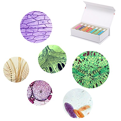 Prepared Microscope Slides Set of Animals Insects Plants for Kids Students Basic Lab Science Education with 35 Slides Include Slide Box