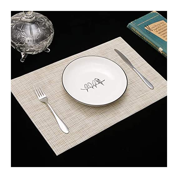 DOLOPL Placemat Placemats Waterproof Beige Placemats Set of 6 Crossweave Woven Vinyl Laminated Table Mat Easy to Clean Heat Resistant Wipeable Spring Placemats for Dining Table - ►Enviromental Meterial:The placemat is FDA approved eco-friendly kitchen accessories,these table placemats are made of high quality PVC and jelly, it's durable and waterproof better, non-fading. [Due to the influence of the waterproof film for the table mats, it's normal for the beige placemats to have an odor. Please place it for one day(it's better) after receiving the wipeable placemats.] ►100%Waterproof and Easy to Clean:the placemats' back of jelly, the kitchen table placemats are waterproof, also these stain proof placemats are easy to clean, just using the wet cloth or towel to wipe off when the table mats have some liquids, or go head to wash the Christmas placemats with soft brush after you finished a BBQ or meal time. ►Heat Resistant Placemats:these set of 6 placemats are heat insulation, resistant to combustion, acid-base, wear-resistant and has good warmth and elasticity. Please make sure your plates are ≤212℉(100℃),it's awsome to protect your wood, glass or other material table. - placemats, kitchen-dining-room-table-linens, kitchen-dining-room - 51zwWY2zcmL. SS570  -