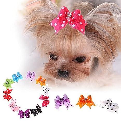 Broadroot 10 Unidades de Bonitos Accesorios de Belleza para Mascotas, Perros, Gatos, Pelucas, Horquillas para el Pelo: Amazon.es: Productos para mascotas