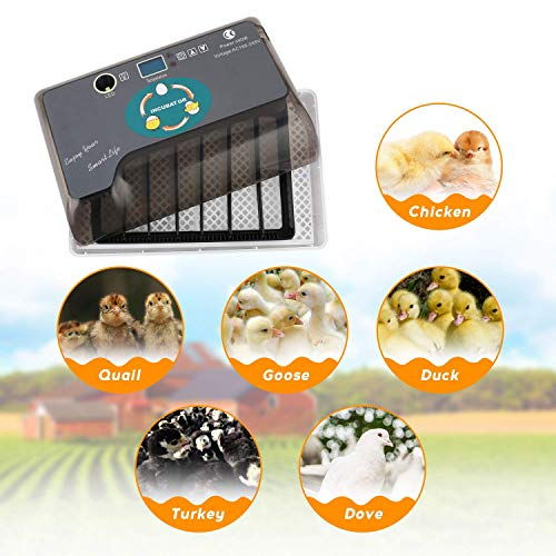 ESTINL Egg Incubator, 9-35 Eggs Fully Automatic Poultry Hatcher Machine with Led Candler and Auto Turning, Small Digital Incubators Breeder for Hatching Chicken Duck Goose Quail Birds Turkey