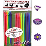 20 Chicken Charm ™ 2 Poultry Leg Bands - Fit Sizes 7 to 14 …
