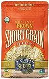 short brown rice - Lundberg Organic Short Grain Rice, Brown, 16 Ounce (Pack of 6)