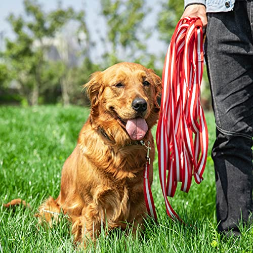 Dog Training Lead, Long Dog Leash Nylon Dog Recall Leads Long Training Dog Leash for Camping Tracking Training Obedience Backyard Play, Strong Lead Leash for Dog Comfortable Padded Handle (15m/50ft)