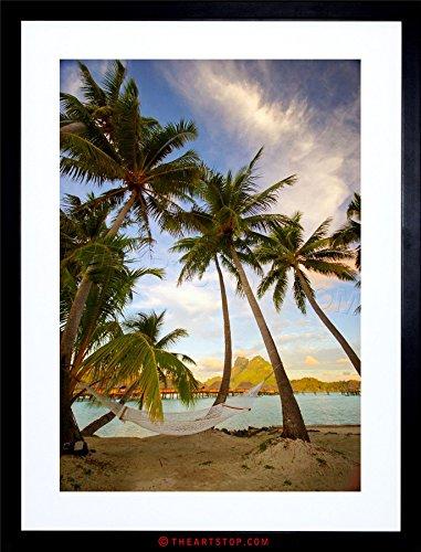 Photo Beach Landscape Bora Tropical Palm Tree Framed Print F12X2774