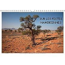 Sur Les Pistes Namibiennes 2017: A La Decouverte De La Namibie