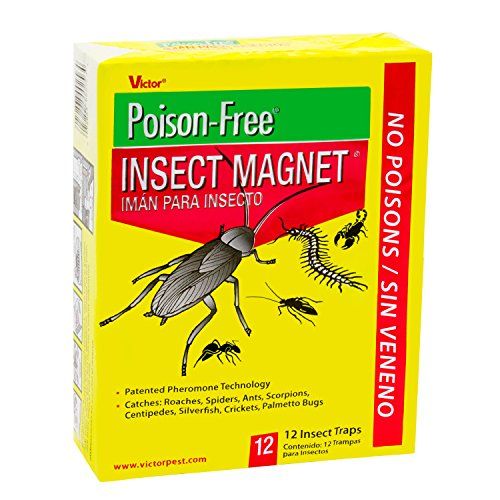 (Victor M256 Poison-Free Insect Magnet Traps, 12-Pack)