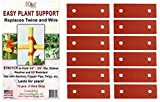 Easy Plant Support Stretch 2 Hole Connecters 12 Pack