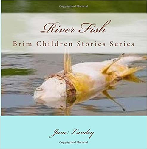 Book River Fish: Brim Children Stories Series: Volume 3 (Brim Children Storybook)