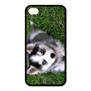 Custom Dog Back case for iphone4,4S JN4S-287