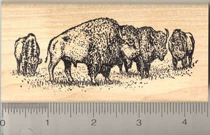 American Bison Herd Rubber Stamp
