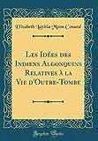 Les Idees Des Indiens Algonquins Relatives a la Vie D'Outre-Tombe (Classic Reprint) (French Edition)