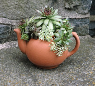 TERRACOTTA TEAPOT PLANTER Cs/3 Ex. Large Terracotta Teapot Planter