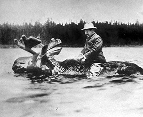 Riding A Moose - 2